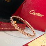 cartier-clash-de-cartier-bracelet-medium-model-0