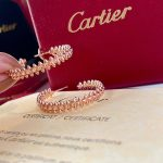 cartier-clash-de-cartier-hoop-earrings-small-model-20211-1