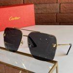 cartier-sunglasses-luxury-cartier-sport-fashion-show-sunglasses-13