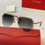 cartier-sunglasses-luxury-cartier-sport-fashion-show-sunglasses-18