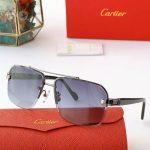 cartier-sunglasses-luxury-cartier-sport-fashion-show-sunglasses-24