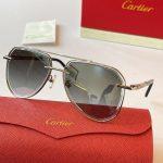 cartier-sunglasses-luxury-cartier-sport-fashion-show-sunglasses-25