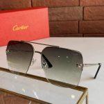 cartier-sunglasses-luxury-cartier-sport-fashion-show-sunglasses-26