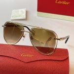 cartier-sunglasses-luxury-cartier-sport-fashion-show-sunglasses-29