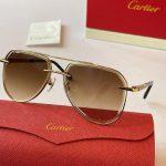 cartier-sunglasses-luxury-cartier-sport-fashion-show-sunglasses-33