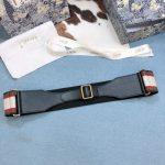 dior-belts-designer-dior-buckle-leisure-belt-wide-6-0cm-10