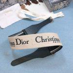 dior-belts-designer-dior-buckle-leisure-belt-wide-6-0cm-5