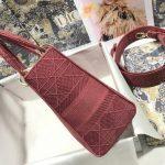dior-m0565-lady-dior-medium-tote-bag-m950-red-2