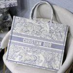 dior-m1286-book-tote-bag-christian-dior-shoulder-shopping-lion-gray-1