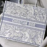 dior-m1286-book-tote-bag-christian-dior-shoulder-shopping-lion-gray-2