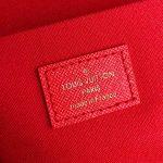 lv-n63032-louis-vuitton-felicie-pochette-bag-m61276-damier-ebene-30